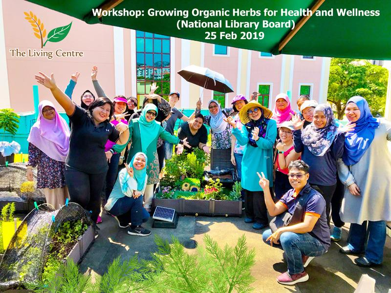 NLB GrowHerbsWorkshop TheLivingCentre 25Feb2019 s